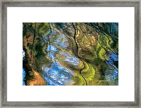 Abstract Of Nature Framed Print