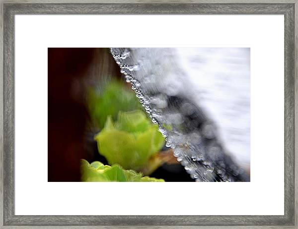 Abstract03 Framed Print by Gerald Greenwood
