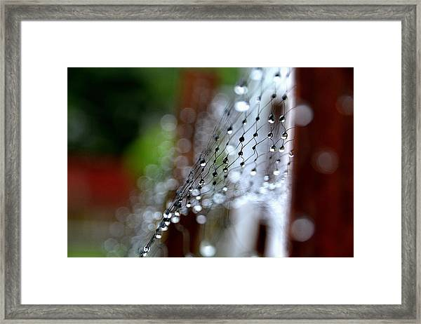 Abstract04 Framed Print