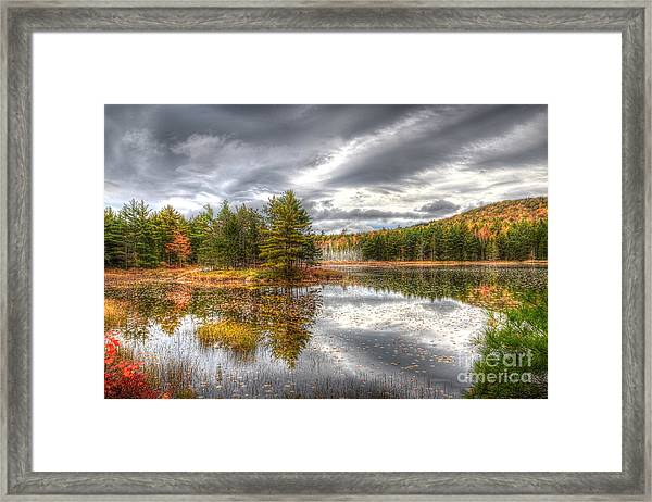 Acadia With Autumn Colors Framed Print