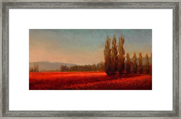 Across The Tulip Field - Horizontal Landscape Framed Print