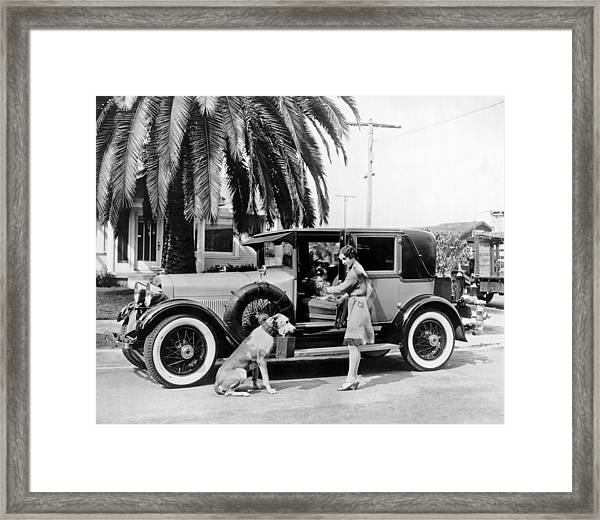 Actress And Dogs Go On Trip Framed Print
