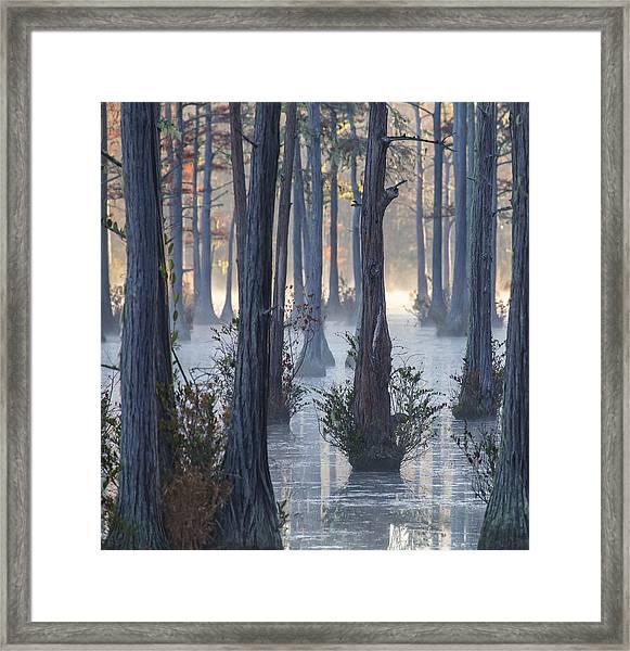 Adams Mill Pond 50 Framed Print