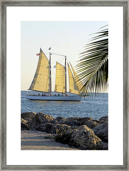 Framed Print featuring the photograph Sailing On The Adirondack In Key West by Bob Slitzan