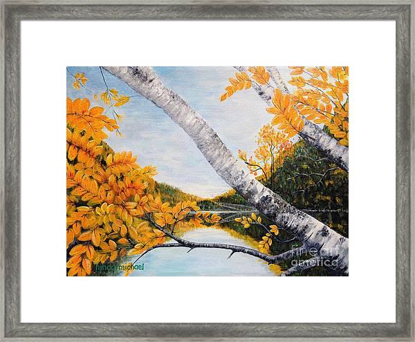 Adirondacks New York Framed Print