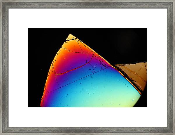 Sharp Tooth Framed Print