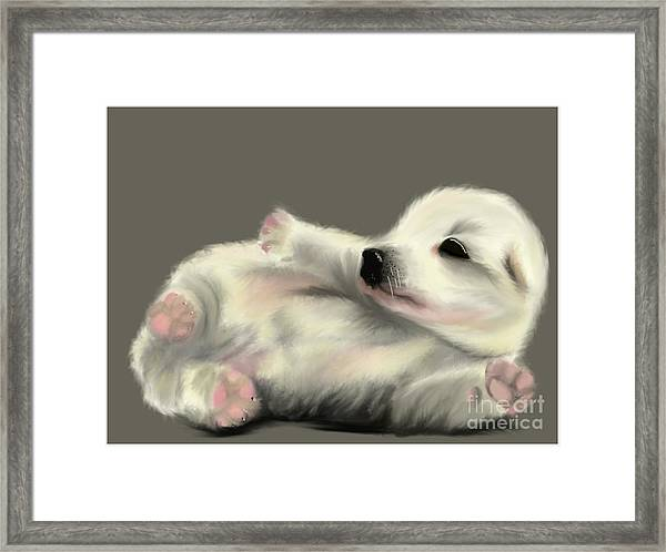 Adorable Pup Framed Print
