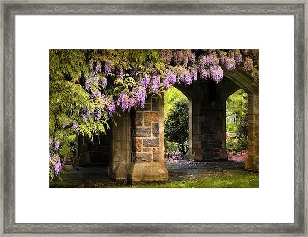 Adorned Framed Print