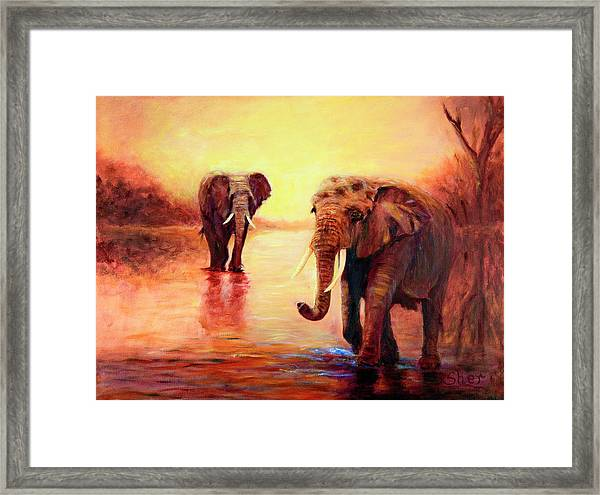 African Elephants At Sunset In The Serengeti Framed Print