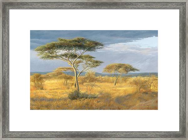 African Landscape Framed Print