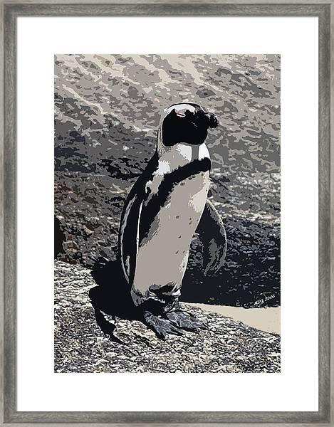 African Penguin Portrait Framed Print by Olde Time  Mercantile