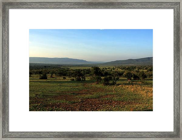 African Savannah  Framed Print