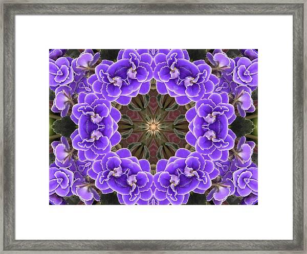 African Violet Mandala Framed Print