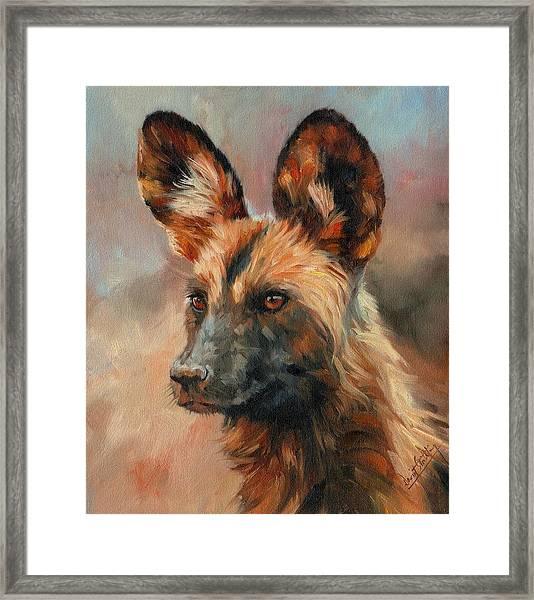 African Wild Dog Framed Print