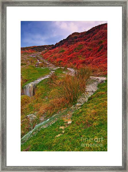 After The Rain - Moorland Streams Framed Print