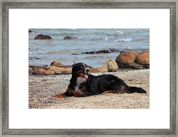After The Swim Framed Print by Rhonda Humphreys