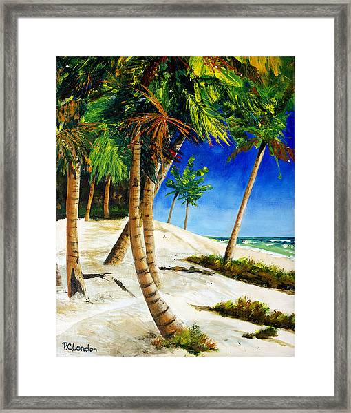 Afternoon Beach Walk Framed Print