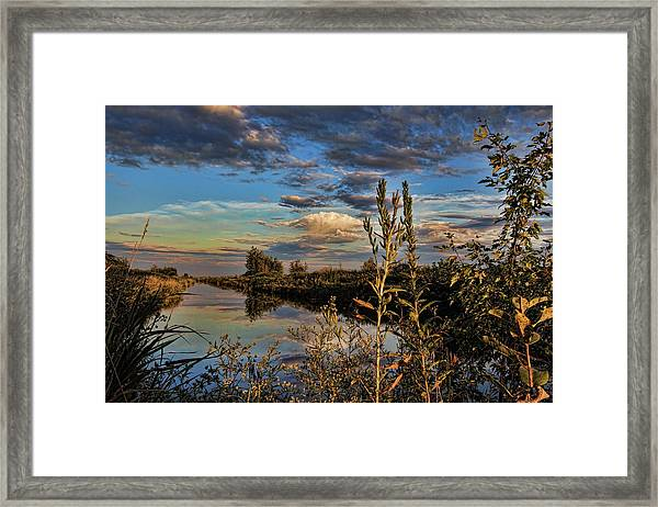 Late Afternoon In The Mead Wildlife Area Framed Print