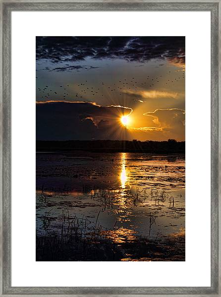 Late Afternoon Reflection Framed Print