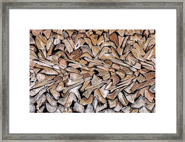 Against The Grain Framed Print
