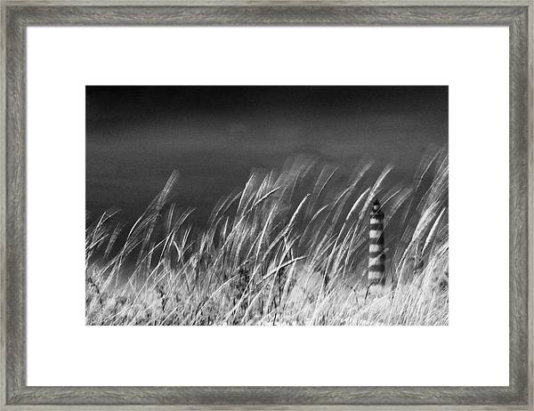 Against The Wind Framed Print by Rui Correia