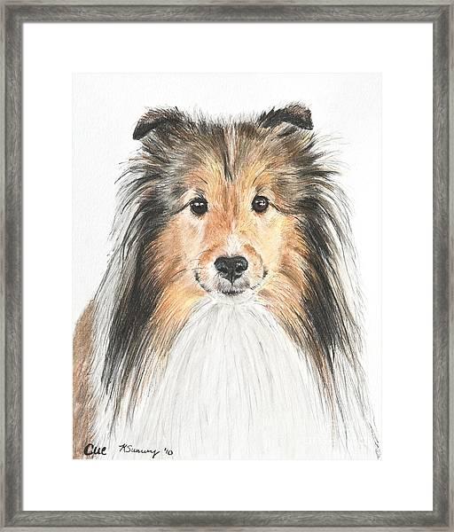 Agility Dog Sheltie In Pastel Framed Print