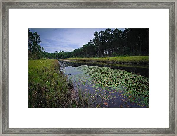 Alabama Country Framed Print