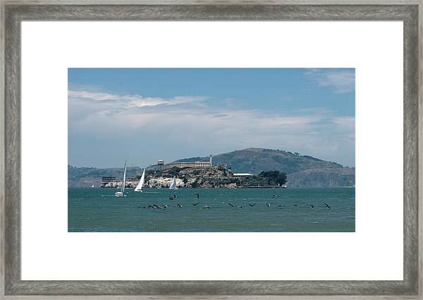 Alcatraz With Pelicans Framed Print