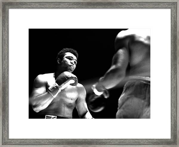 Ali - The Look Framed Print by Robert  Rodvik