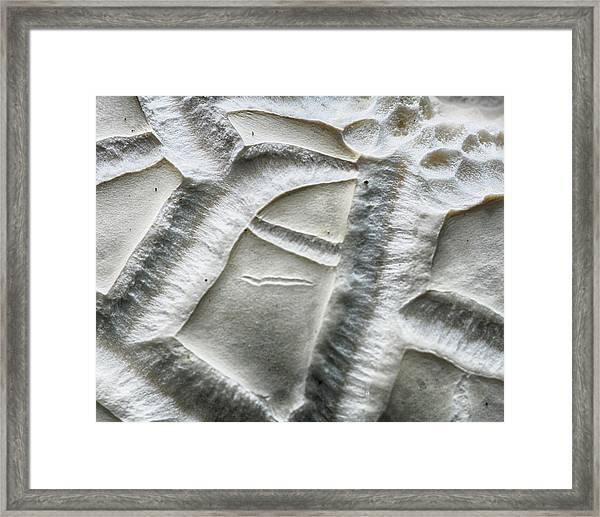 Alien Surface Framed Print