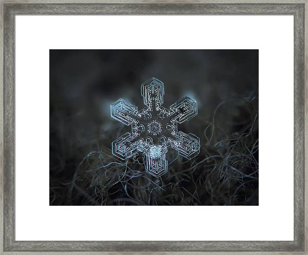 Snowflake Photo - Alioth Framed Print