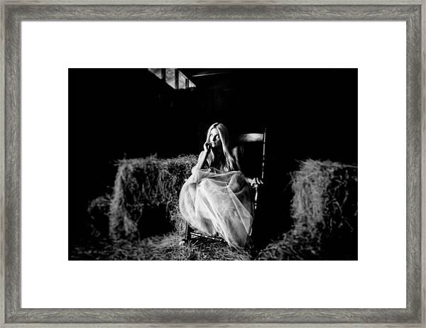 Alitur Vitium Vivitque Tegendo Framed Print