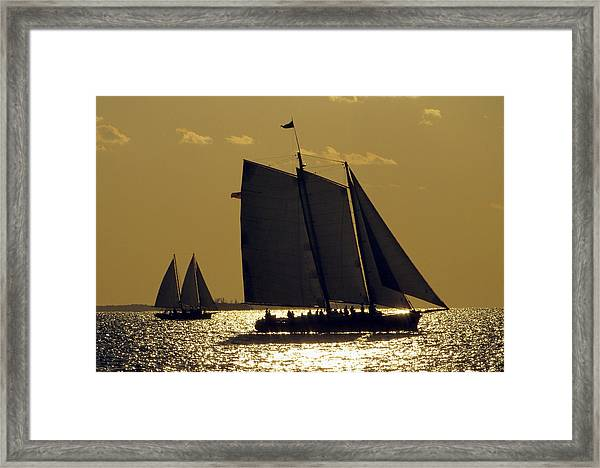Framed Print featuring the photograph All Sails Sunset In Key West by Bob Slitzan