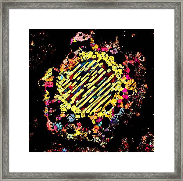 Dialated Pupil Framed Print