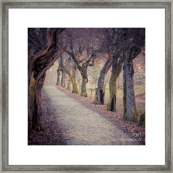 Alley - Square Framed Print