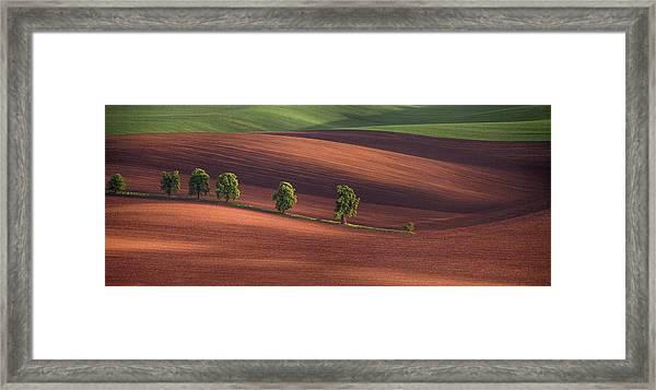 Allley Framed Print by Peter Svoboda, Mqep