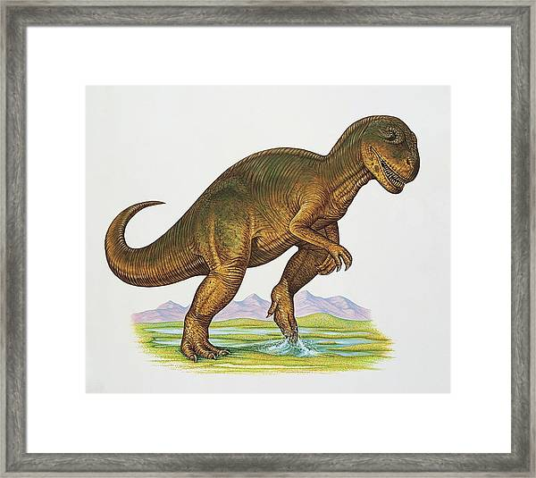 Allosaurus Dinosaur Framed Print by Deagostini/uig/science Photo Library