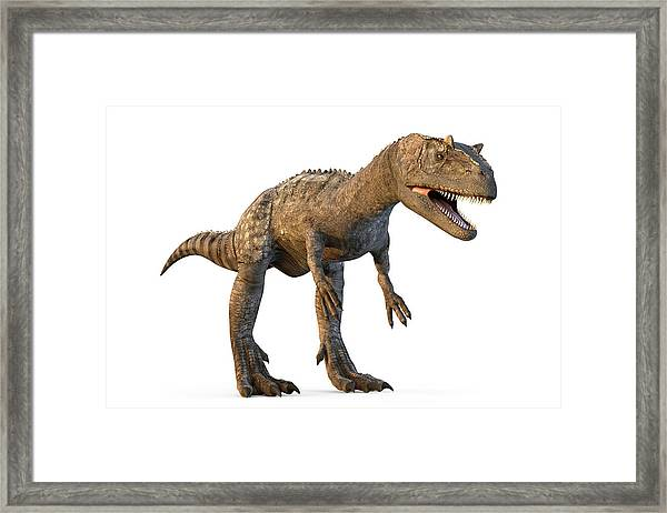 Allosaurus Dinosaur Framed Print by Roger Harris/science Photo Library