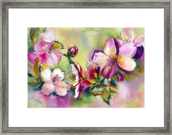Almond Blossoms Framed Print