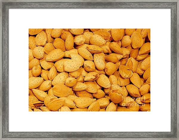 Almonds Framed Print