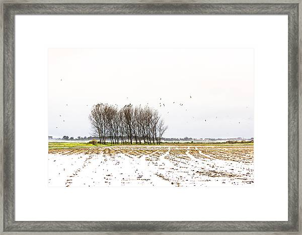 Almost Winter Framed Print