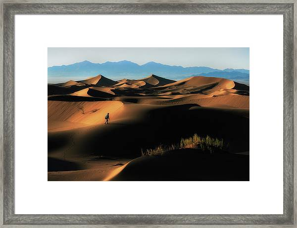 Alone In Nature Framed Print by Babak Mehrafshar (bob)