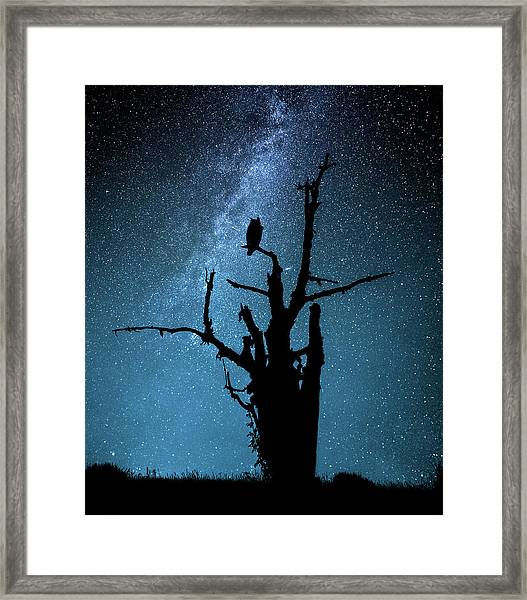 Alone In The Dark Framed Print by Manu Allicot