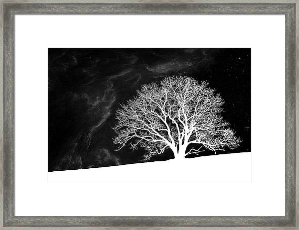 Alone On A Hill Framed Print