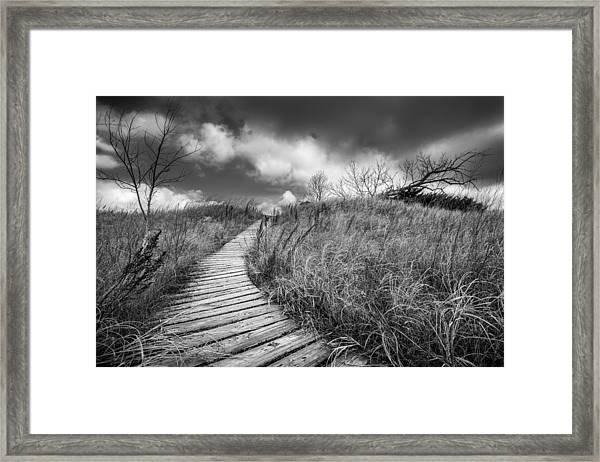 Along The Boardwalk Framed Print