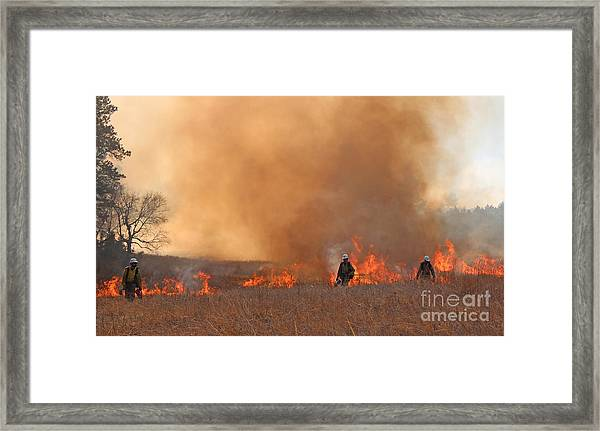 Alpine Hotshots Ignite The Norbeck Prescribed Fire. Framed Print