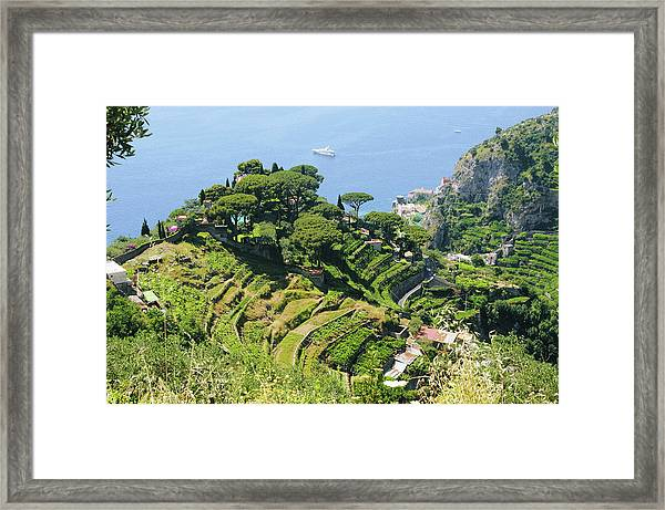 Amalfi Coast Terraces Framed Print