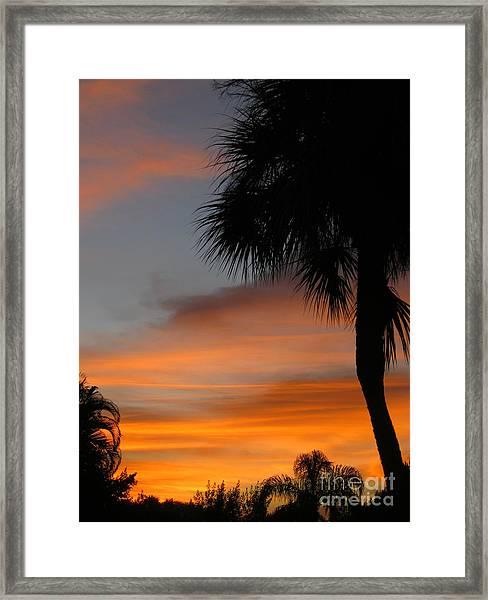 Amazing Sunrise In Florida Framed Print