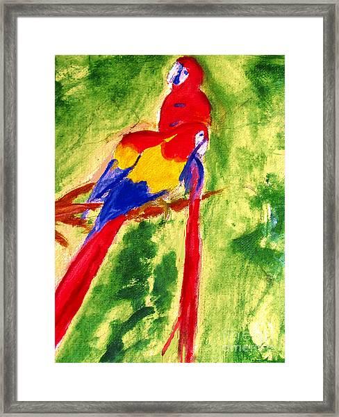 Amazon Jungle Birds Framed Print