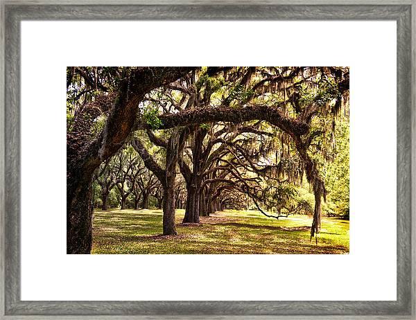 Amber Archway Framed Print